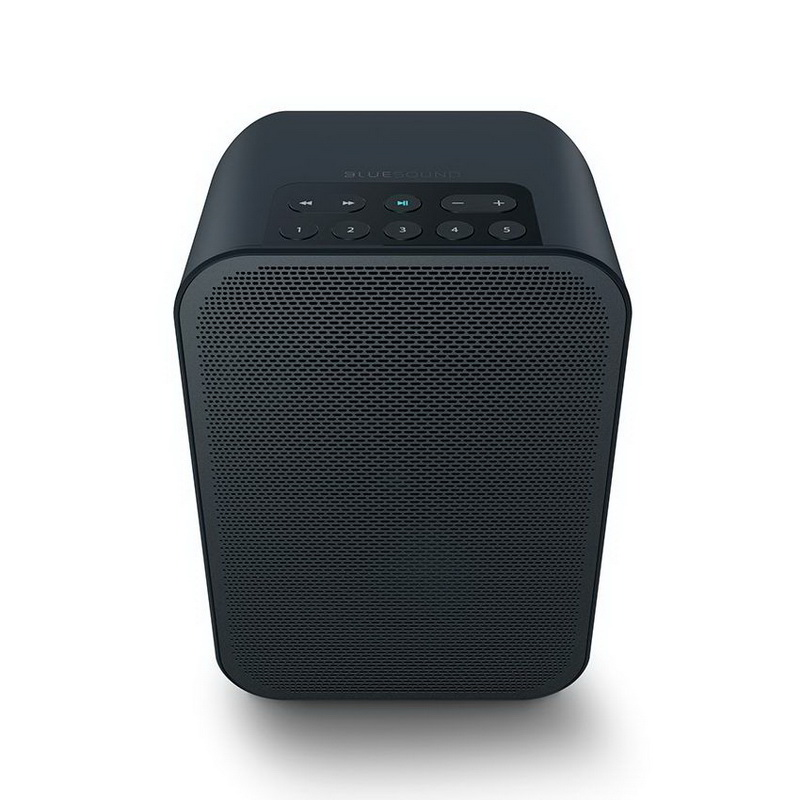 Активная Bluetooth колонка BLUESOUND Pulse Flex